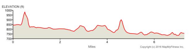 elevation (1)